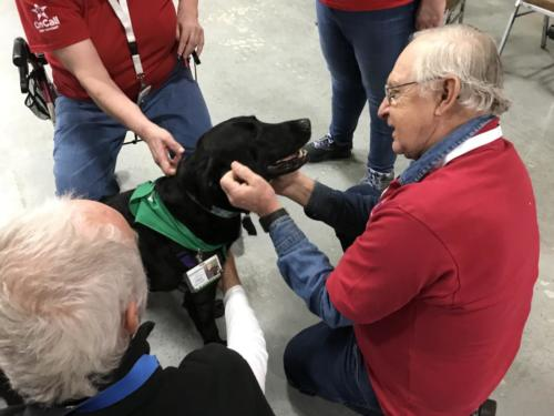 Therapy Dogs of Vermont 8