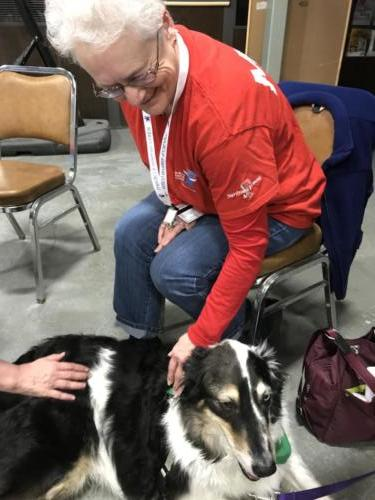 Therapy Dogs of Vermont 5
