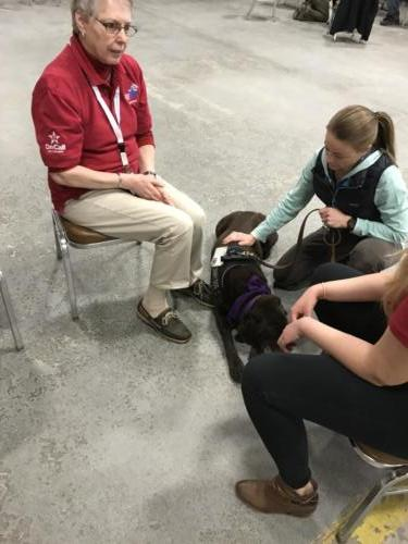 Therapy Dogs of Vermont 6